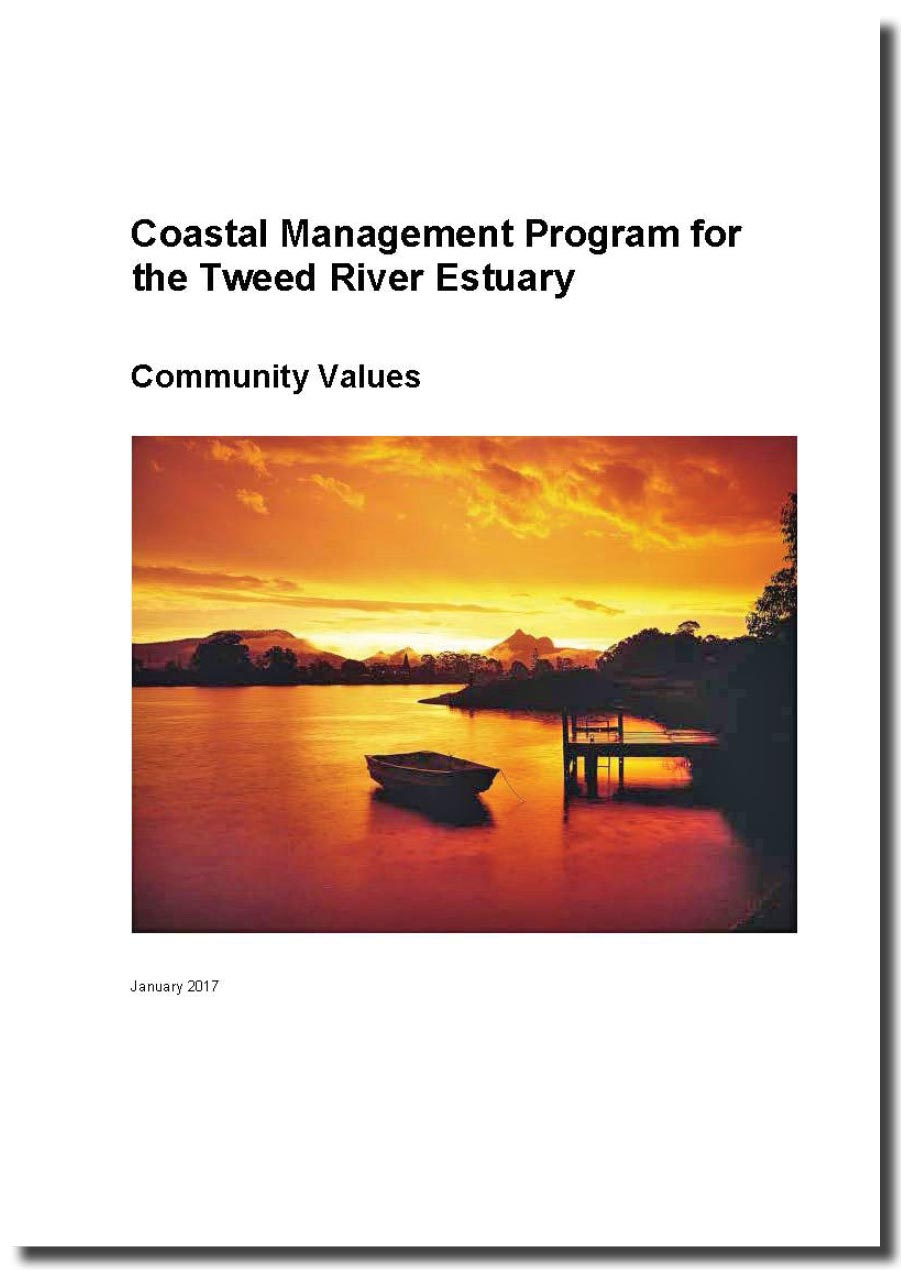 Community values report front page edit
