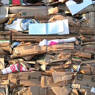 Cardboard packed as waste