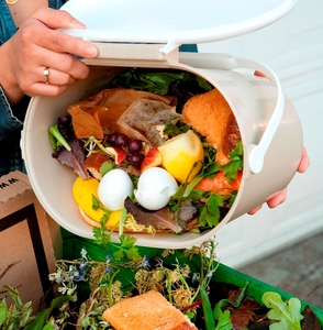 Food_scraps_and_green_waste_750x750