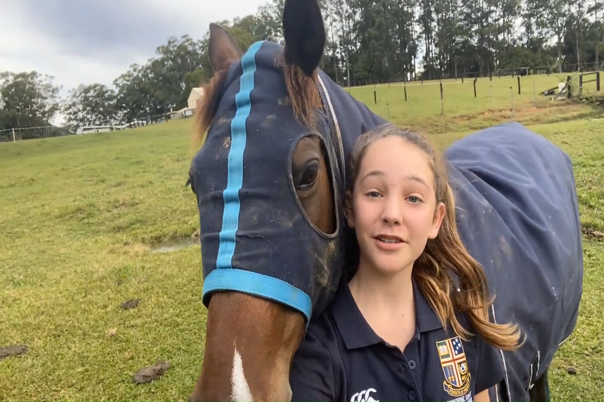 """Looking after your family and animals"" Sunshine Coast Grammar School"