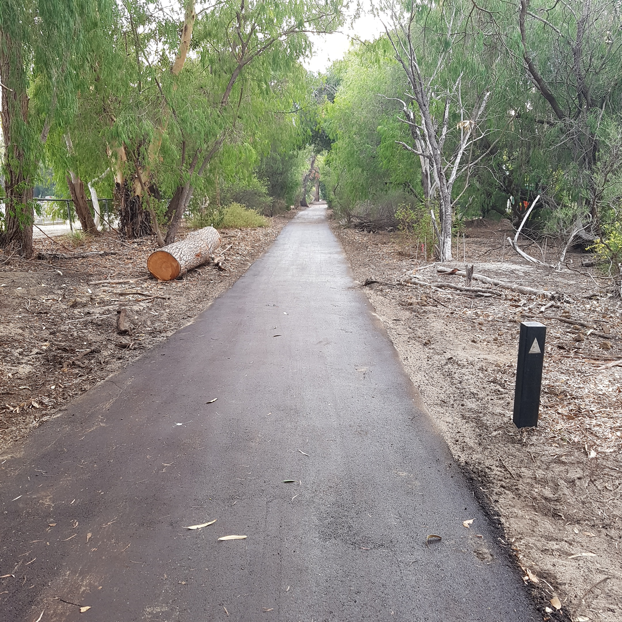 New pathway hollywood 7.6.19