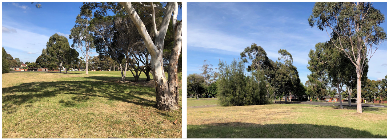 Two images of the site - lawn and trees and a building in the distance