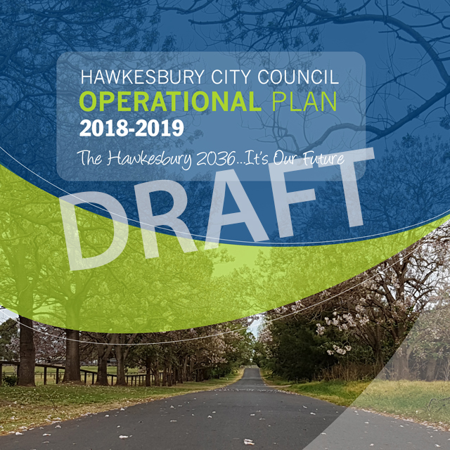 Operational plan draft facebook %285%29