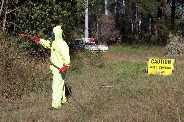 Manual spraying bushland areas