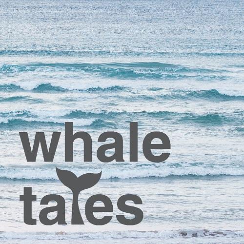 Whaletalks 2019 socialmediatile 1080x1080px