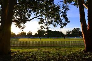 Kensington park web