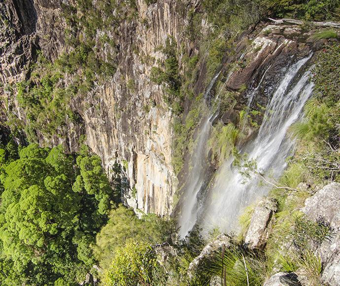Nightcap national park minyon falls 141319