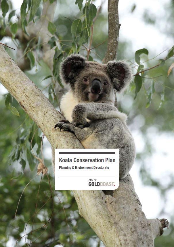 Koala conservation plan