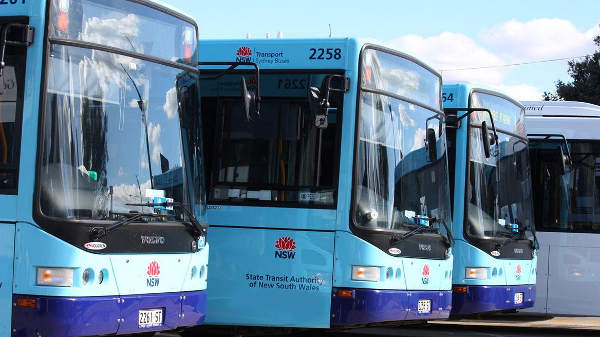 Sydney buses 1168x656