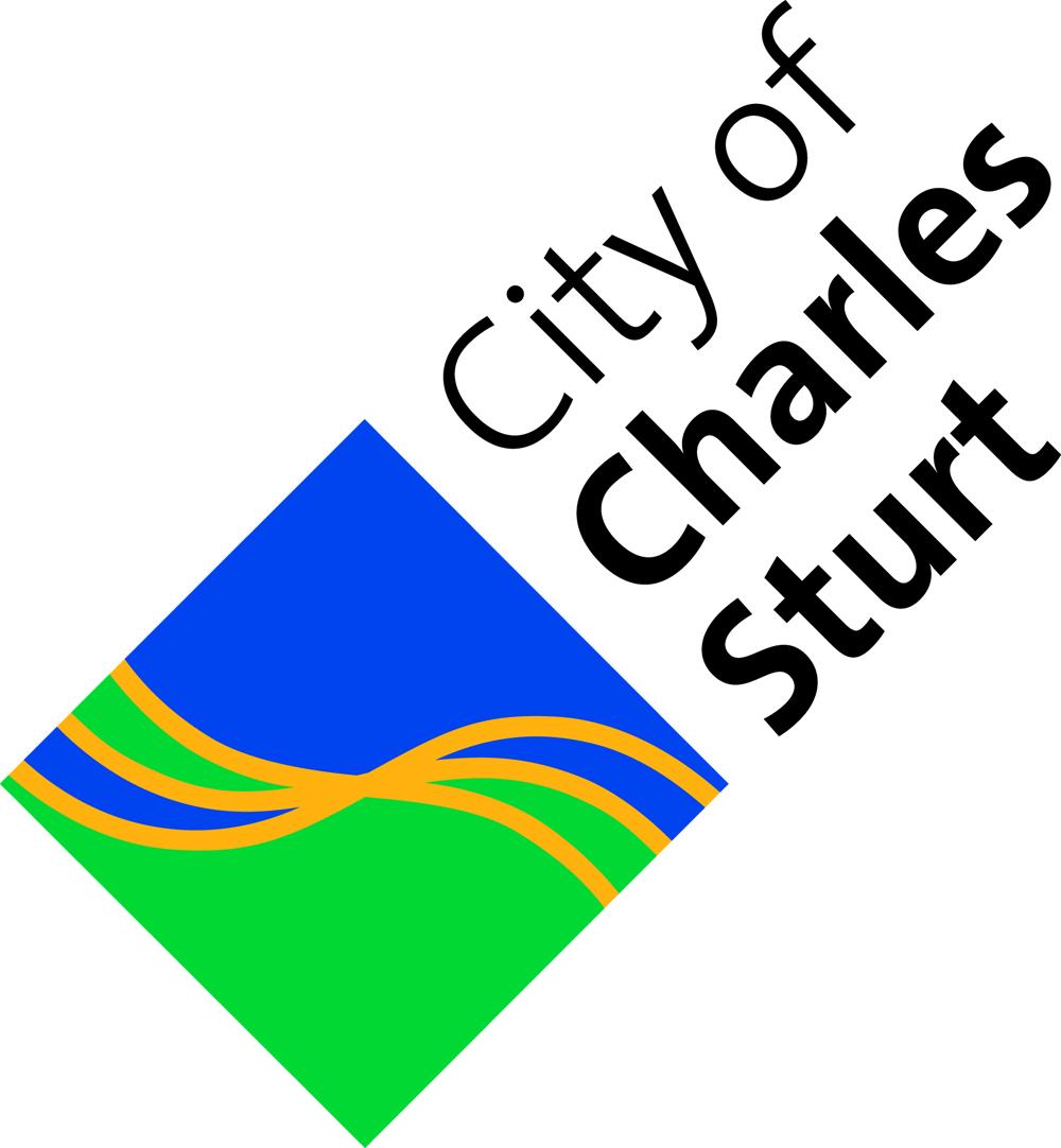 Ccs new logo cmyk %282%29