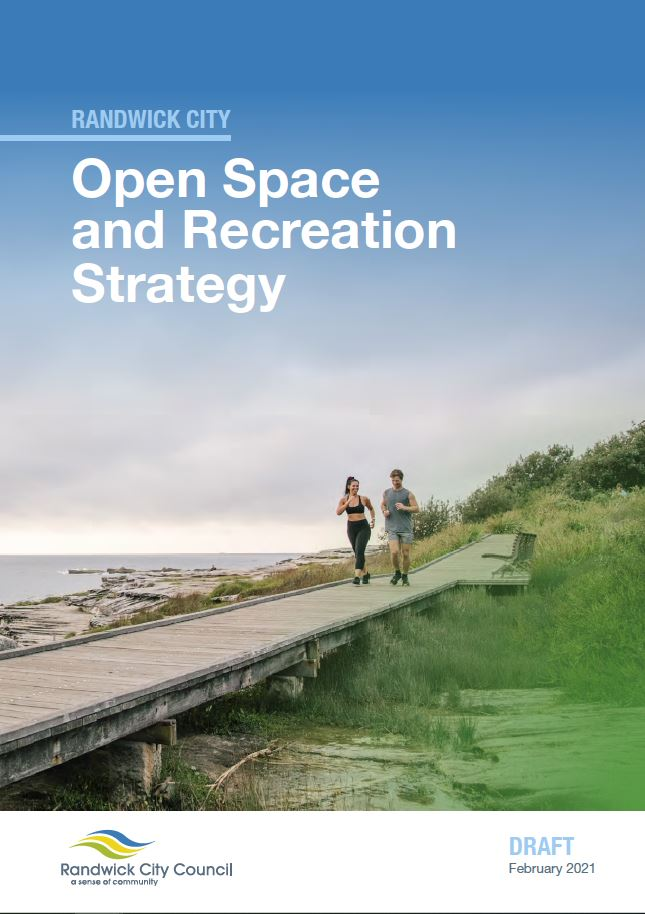 Draft open space and recreation needs strategy