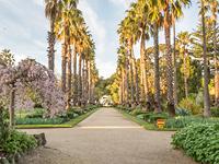Comms02313   botanical gardens master plan    participate tile 200x150px