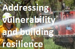 Addressing vulnerability and building resilience