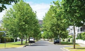 Image for commencement of moss vale road south urban release area dcp news item