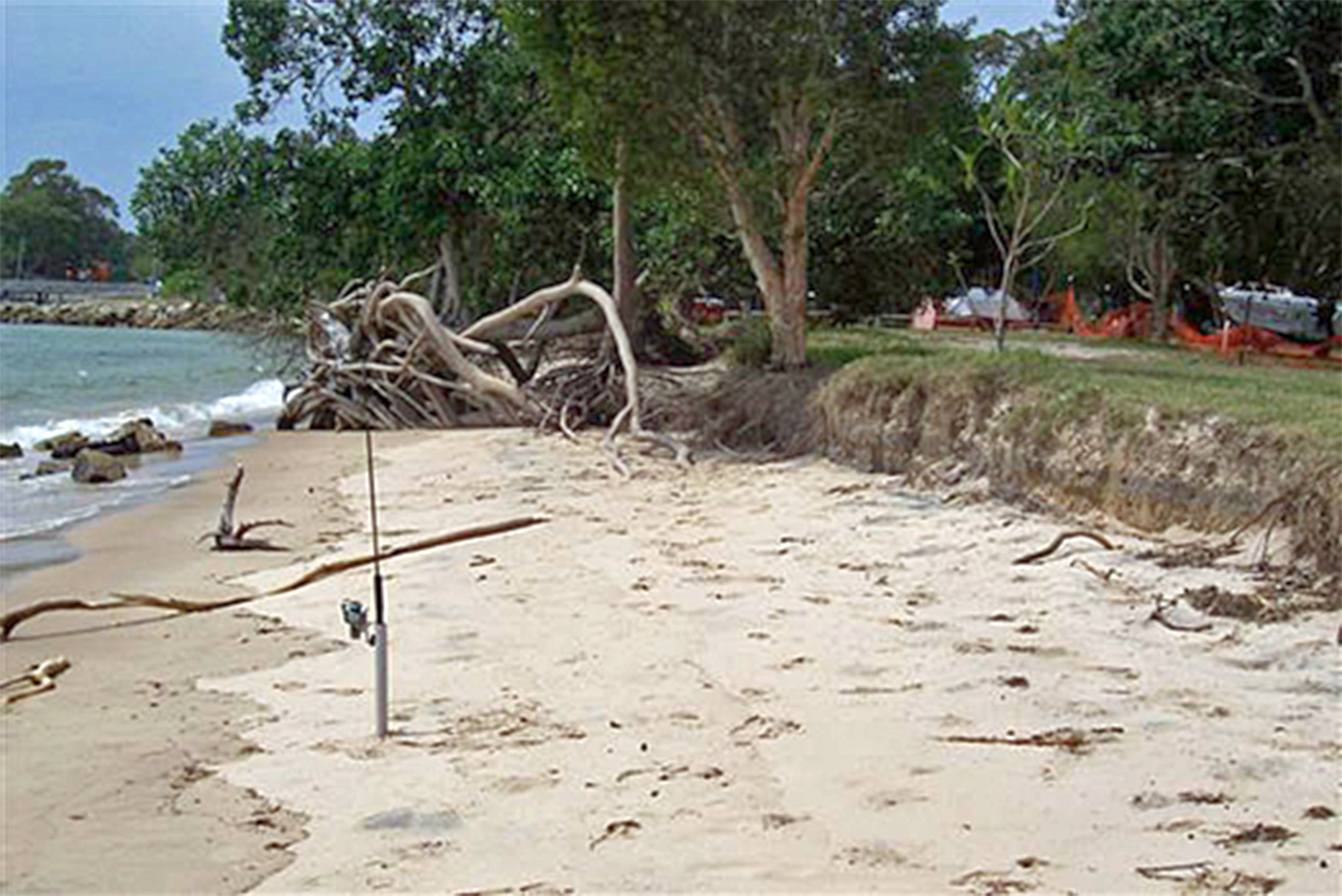 coastal management and erosion Coastal erosion is the wearing away of material from a coastal profile including the removal of beach, sand dunes,  coastal management control methods edit.