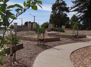 Memorial_park_community_garden