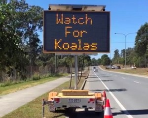 Variable koala road sign