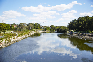 Cooks river naturalisation 2