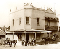 P h bussell 1895 127 trafalgar street annandale small