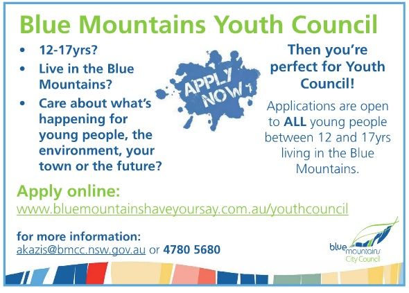 Youth_council_application_ad