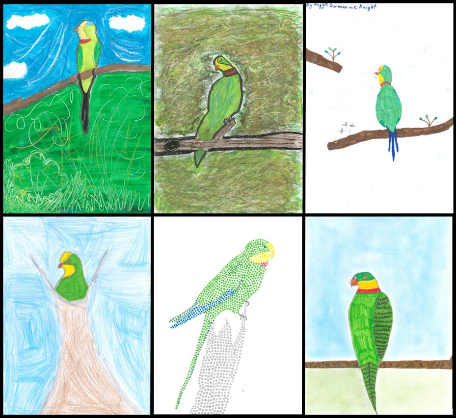 Superb drawings winners