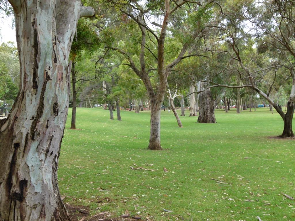 Reserve master planning hazelwood park kensington for Kensington park