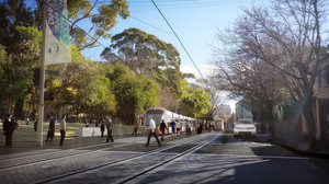 Image courtesy of transport for nsw cselr ai surry hills lo res 11 2013