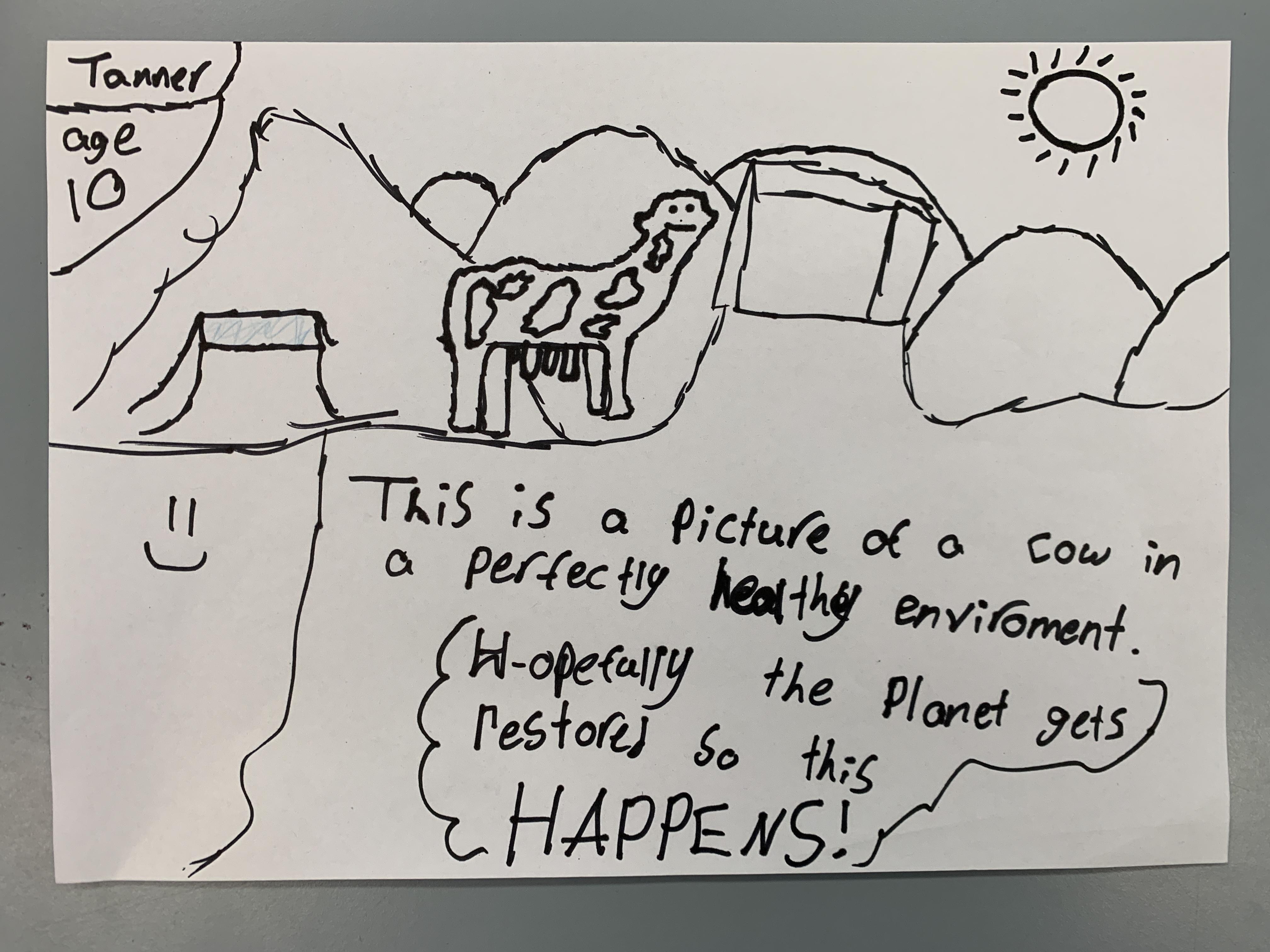12. healthy environment