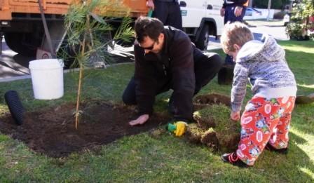 Street planting day in Waverley.