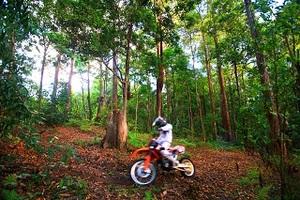 Motorcross project image