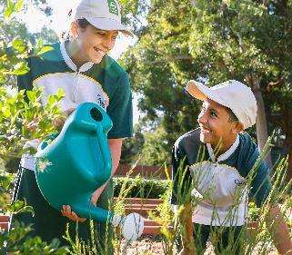 Landcare grants