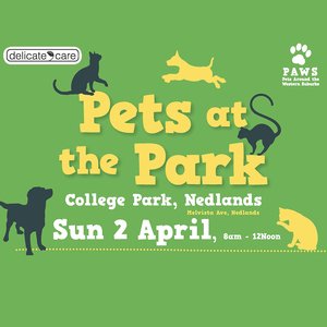 Pets at the park a4 2017 artwork 3