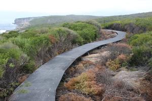 Raised boardwalk coast track