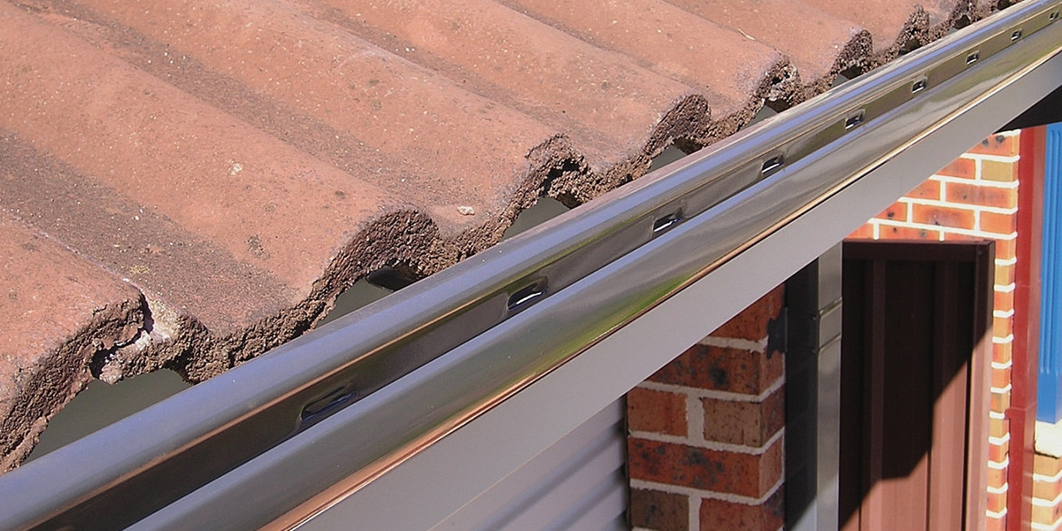 Guttering And Leafguard Green Frog Roofing