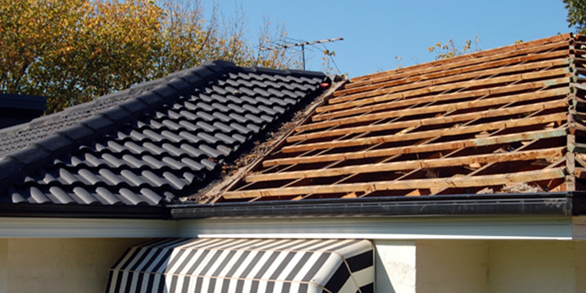 Metal Re Roofing Process Green Frog Roofing Green Frog