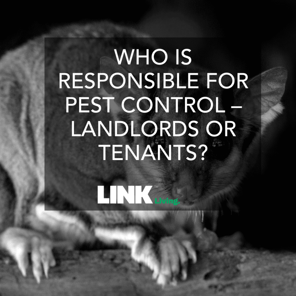Who Is Responsible For Pest Control – Landlords Or Tenants_