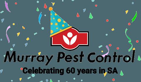 Celebrating 60 years in SA