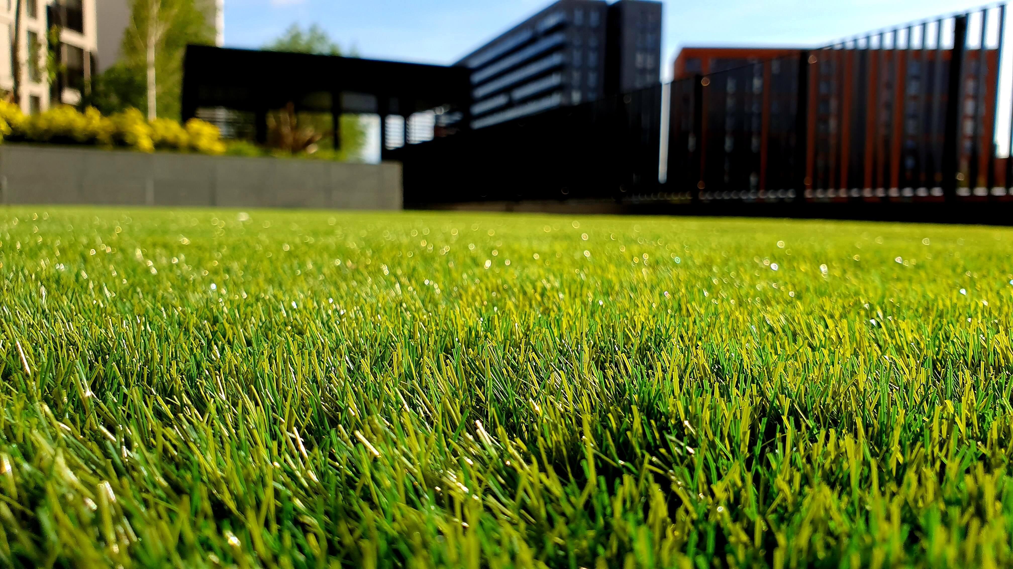 Oakmont Grass 5