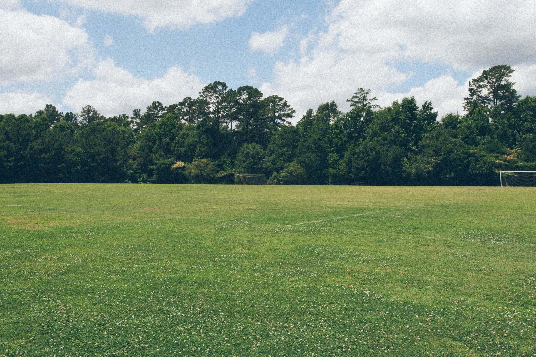 Oakmont Grass 3