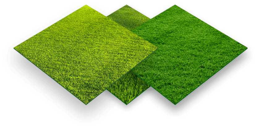 grass-combined