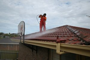 affordable roof cleaning