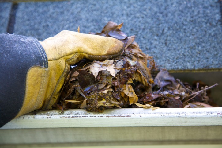 How To Clean Your Roof Gutters