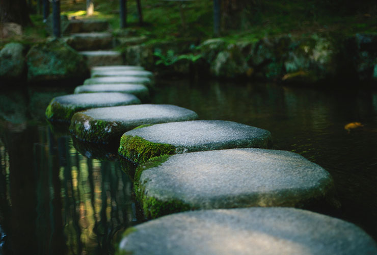 Photo of Career Stepping Stones