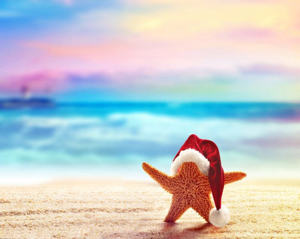 Photo of December: Wind Up or Wind Down?