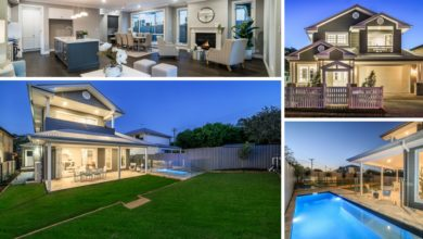 Photo of Video of the Week – A dog's journey through 'Hamptons in Bulimba'