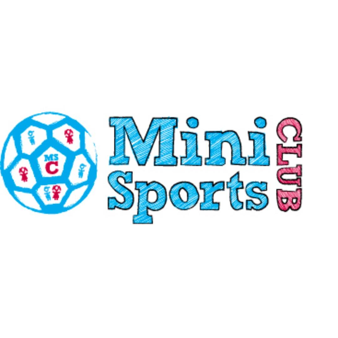 Mini Sports Club