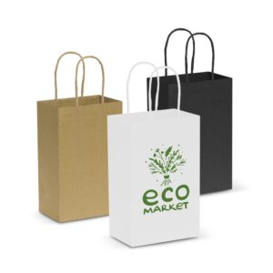 107582 – Paper Carry Bag – Small