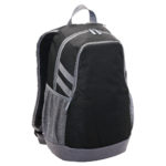 1219 – Velocity Laptop BackPack