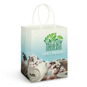 116937 – Large Paper Carry Bag – Full Colour