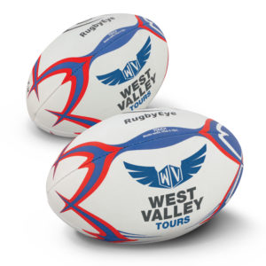 117254 – Touch Rugby Ball Pro